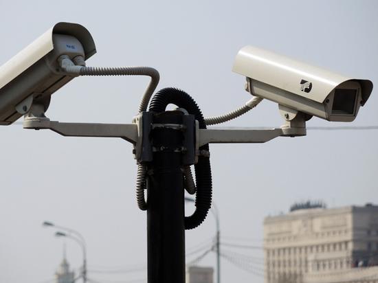 Москвичи начали использовать уличные видеокамеры в поисках пропавших питомцев