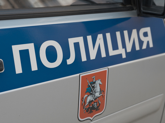 Установлен подозреваемый в убийстве женщины и ее сына в Москве