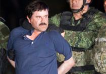 Иммигрант из Украины был сообщником международного наркодилера