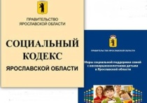 В Ярославской области отменяют субсидии