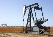 Эр-Рияд идет ва-банк: саудиты собираются разогнать ОПЕК