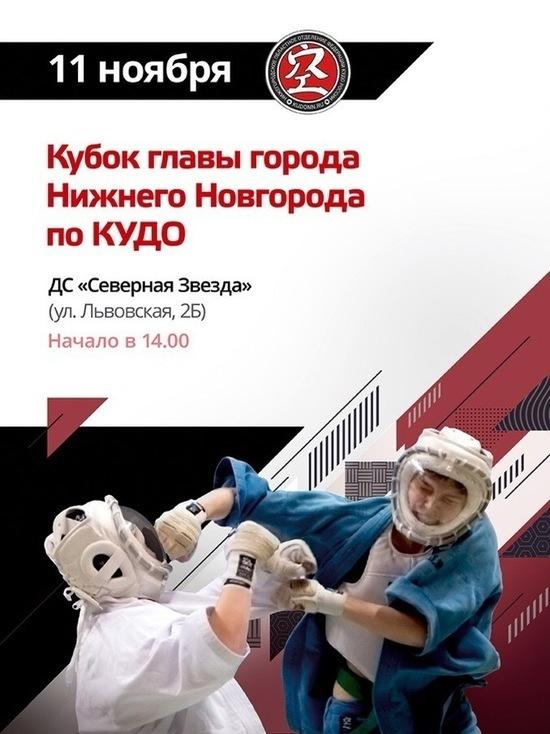 Кубок главы Нижнего Новгорода по КУДО пройдет 11 ноября