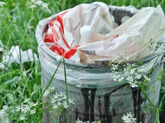 Вывоз мусора обойдется Барнаульскому регоператору в 335 млн рублей
