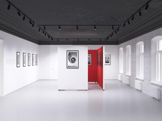 Русский музей фотографии в Нижнем Новгороде начали ремонтировать