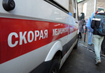 Подробности страшной смерти семьи в Электростали: боялись вызвать «скорую»