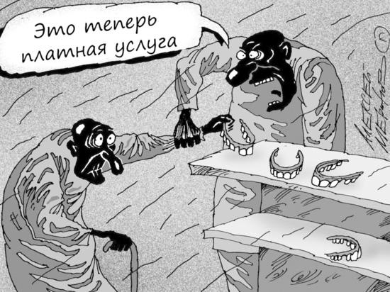 Иркутские садоводы просят правительство соблюдать их законные права