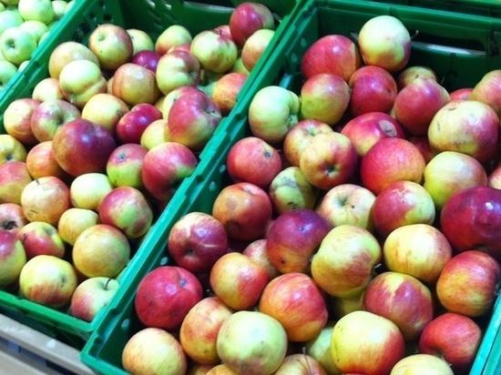 В Кимрах Тверской области торговали сомнительными фруктами
