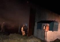 Почти два десятка животных сгорели в пожаре в совхозе Козельска