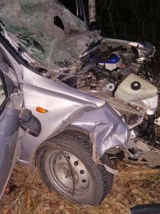 """В Тамбовском районе """"Лада Калина"""" врезалась в грузовик: водитель легковушки погиб"""