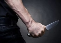 Житель Канаша ударом ножа в сердце убил своего соседа