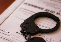Жителю Мордовии грозит до трёх лет несвободы за запасы марихуаны
