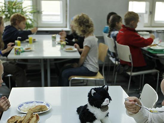 Обед с госпитализацией: как работает система питания в школах
