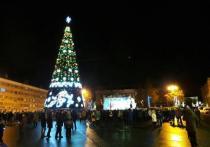 Новогоднюю ёлку в Пскове установят к 7 декабря