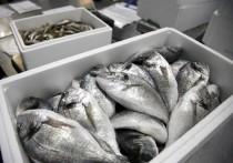 Рыбную отрасль грозят потопить новые правила игры