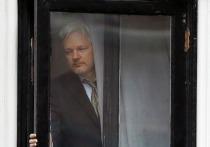 Основателю WikiLeaks Ассанжу предъявили обвинения в США