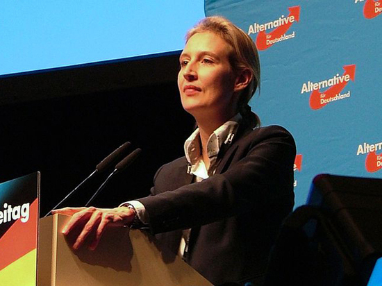 Скандал в Бундестаге: «Альтернативу для Германии» заподозрили в финансовых махинациях