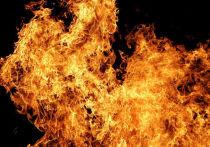 На пожаре в Тверской области обнаружили два неопознанных тела