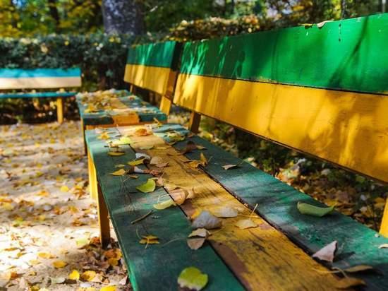 Как улучшить почву перед зимой – совет волгоградского эксперта