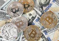 В мире цифровых денег машины теснят людей: основной доход генерируют не удачливые трейдеры, а специальные программы