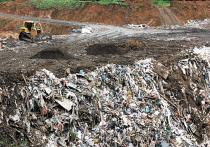 Госдума приняла в первом чтении законопроект, который позволит Москве, Санкт-Петербургу и Севастополю еще три года не переходить на новые правила сбора, вывоза и утилизации мусора, а также новые тарифы на эти услуги