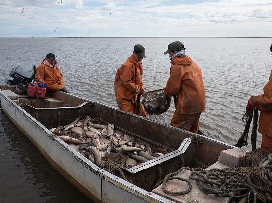 В регионе обсудили проблемы рыболовной отрасли