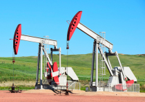 Набиуллина предупредила о последствиях падения нефти до 35 долларов