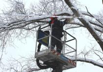 В Россию идет зима: Росгидромет предупредил о значительном ухудшении погодных условий (снегопаде, ветре и гололеде) в целом ряде регионов — от Москвы до Ханты-Мансийского автономного округа