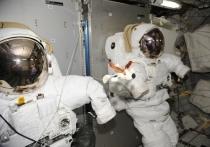 Российский космонавт Сергей Прокопьев, находящийся на борту Международной космической станции, рассказал, что влажные салфетки порой для защиты экипажа МКС неожиданным образом используются влажные салфетки
