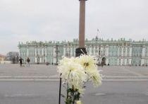 Никитский ботсад подарил Эрмитажу одноименную хризантему