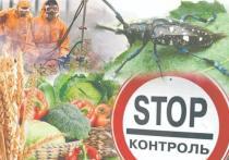 Вывозимая с Тверской области продукция прошла контроль