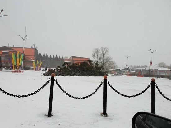 Ветер повалил новогодние елки в Иркутске и Черемхово