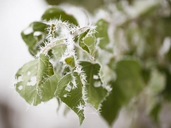 Дождь с переходом в снег и гололед ожидается в Волгограде 27 ноября