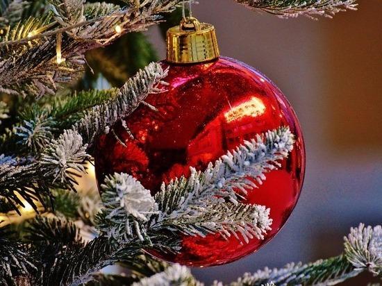 Куда сходить на Кубани в предверии новогодних праздников
