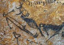 Группа исследователей из Великобритании предположила, что наскальные рисунки во французской пещере Ласко могут говорить об увлечении древних людей астрономией