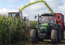 Иностранные журналисты внимательно присмотрелись к российскому сельскому хозяйству, и после предварительного анализа назвали эту отрасль самой быстрорастущей в экономике страны