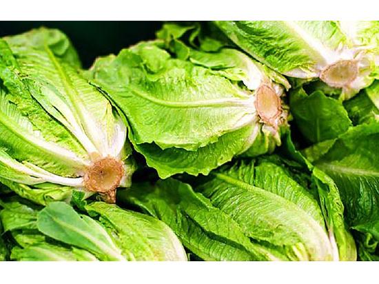 Листья салата вредны для вашего здоровья