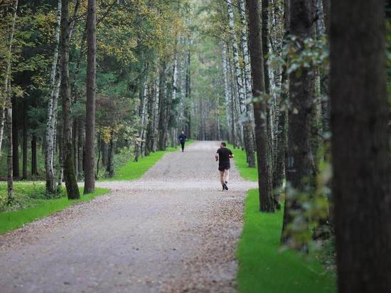 В Тамбове появится еще одно место для прогулок и отдыха