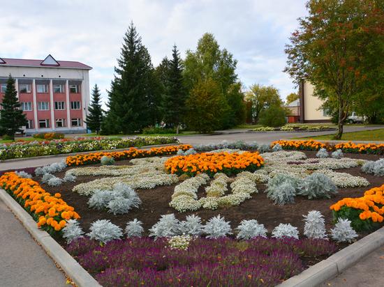 Сельсоветы Топчихинского района продуктивно взаимодействуют с жителями и бизнесом