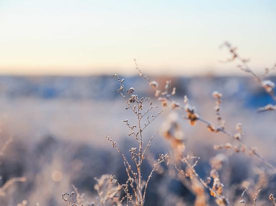 В первый зимний день волгоградцев ждет ветреная погода при -3°С