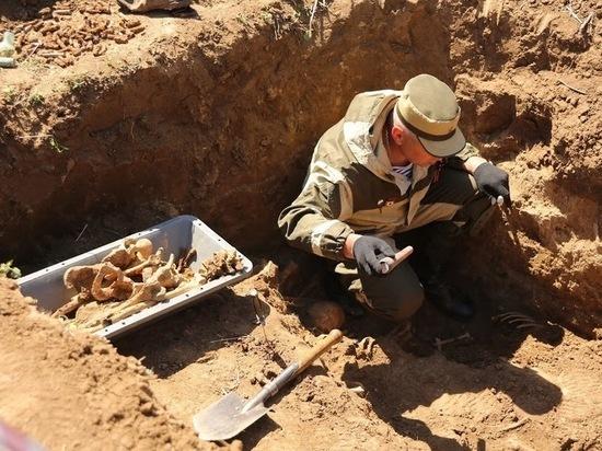 Древнейшим местом обитания человека оказалась Северная Африка