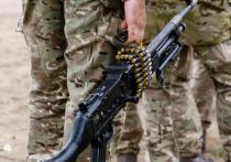 В посольстве РФ прокомментировали операцию Британии на Украине