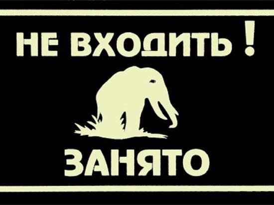 Не входить, занято: мэрия Архангельска прикрылась от протестующих детьми и крокодилом