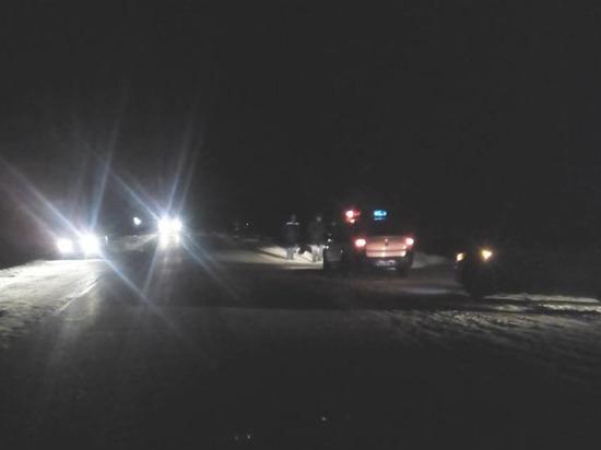 В Чувашии водитель внедорожника насмерть сбил женщину, выбежавшую из-за автобуса