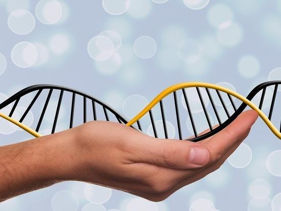 Вопросом генетической модификации людей займётся ВОЗ