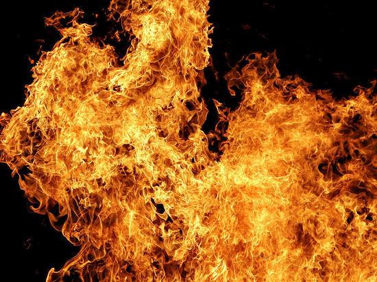 За прошедшую неделю на пожарах в Тверской области погибло 5 человек