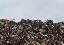 В Бурятии могут разорвать контракт с единым оператором по мусору