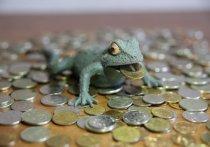 Бездефицитный бюджет Волгоградской области приняли в третьем чтении