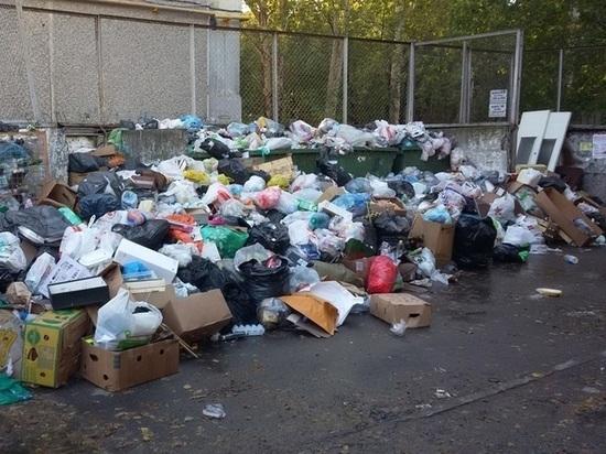 Екатеринбуржцы будут платить по 182 рубля за вывоз мусора