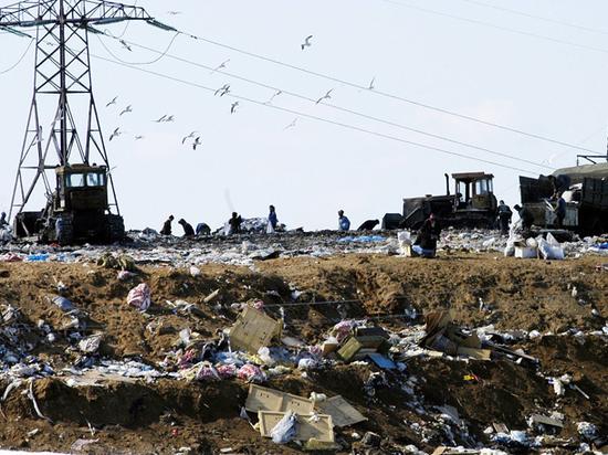 """""""Тупо завалить Россию мусором"""": с 1 января стране грозит проблема"""