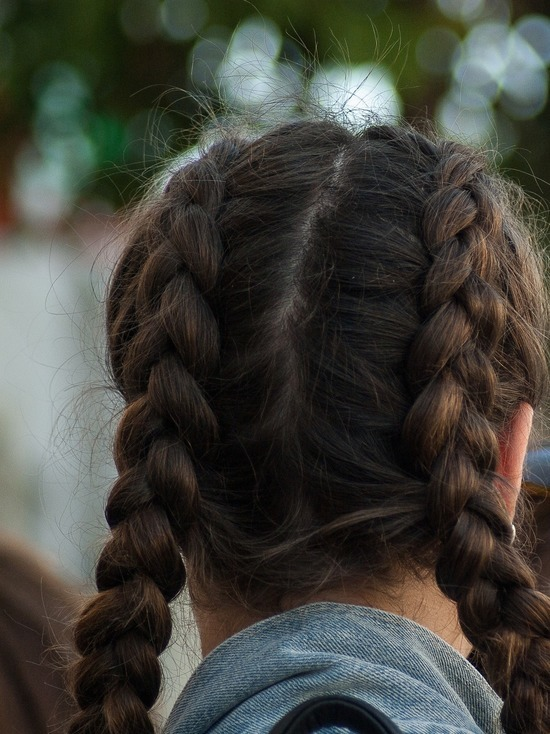 Девочек с косичками могут признать опасными для немецкого общества